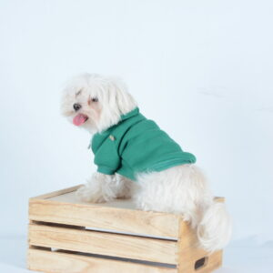 pets clothes, hoodie